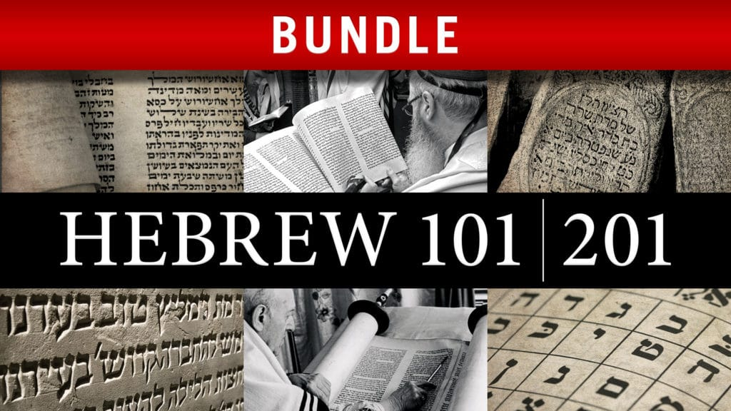 Hebrew 101/201 Bundle