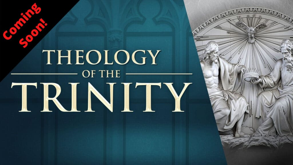 Theology of the Trinity Pre-Sale